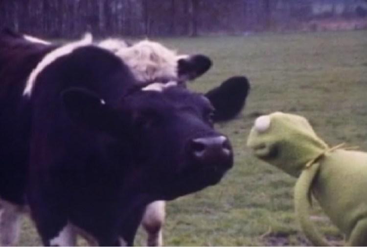 muppetmovietest