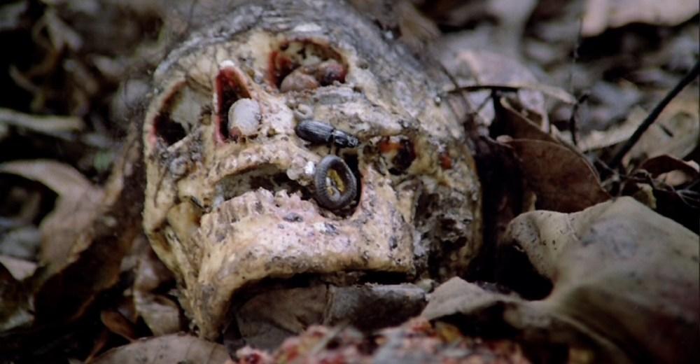 Resultado de imagen para cannibal holocaust 1980