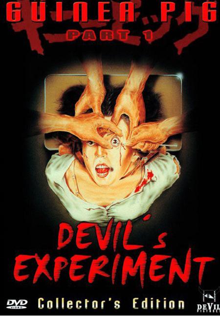 guinea-pig-devils-experiment-01