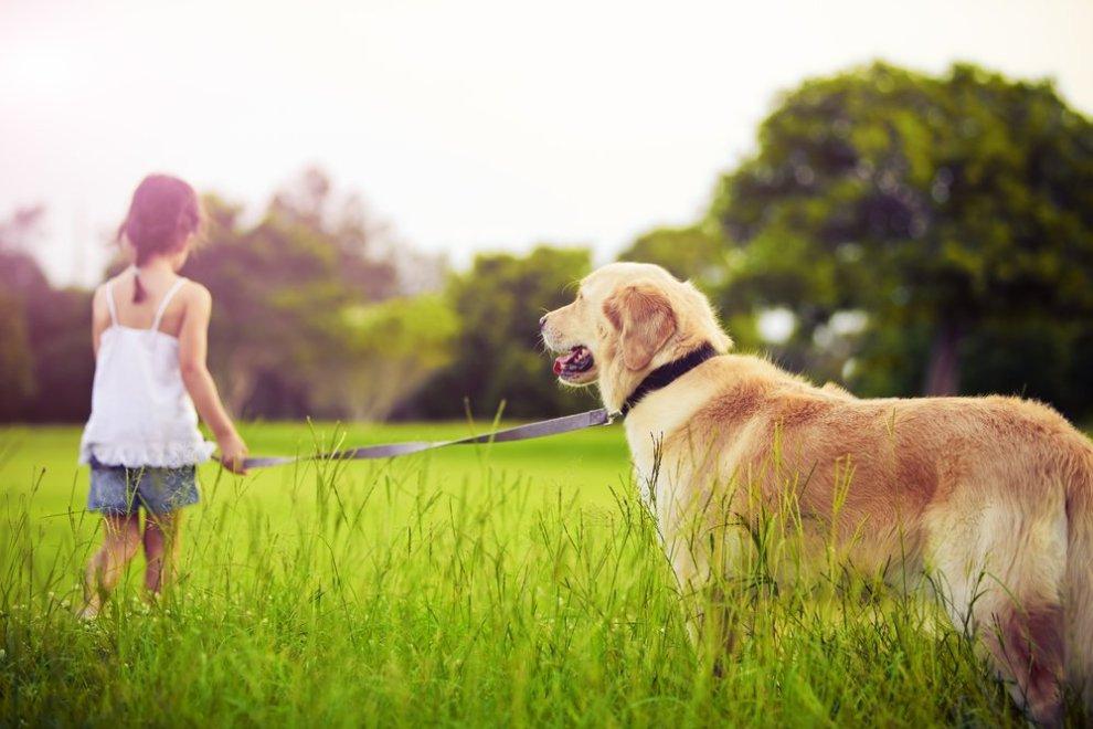 Kind met hond buiten