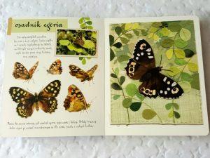 20180918_1634531329724796-300x300 Dom Montessori: Mały atlas motyli Ewy i Pawła Pawlaków. Nasza Księgarnia – wrzesień 2018
