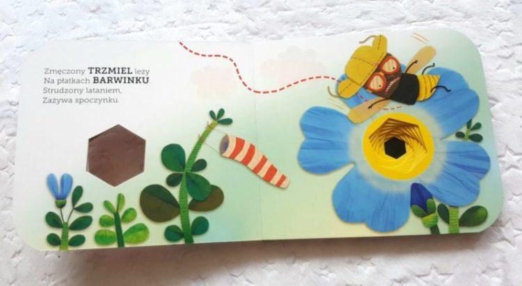 20190815_071231809791728-1024x768 Owady i kwiaty -Akademia mądrego dziecka od EGMONT. LATO 2019
