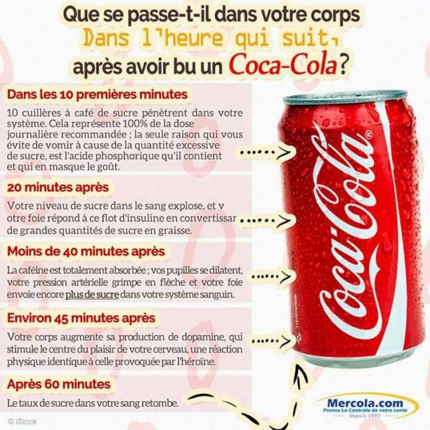 Les effets d'une cannette de soda sur votre corps 2