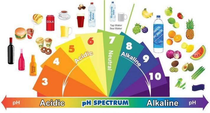 Quels sont les aliments alcalins ? 1