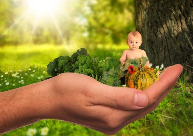 Aliments diététiques : le coupable de l'obésité chez les enfants 1