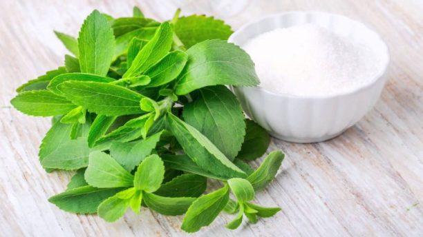Stevia : Un moyen sain de satisfaire son envie de sucreries 2
