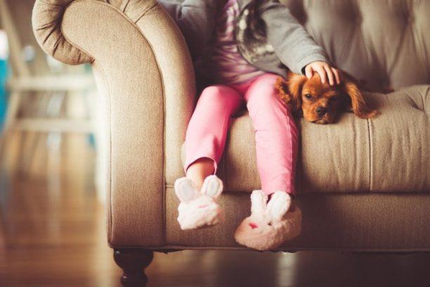 Les études le prouvent: les animaux de compagnie aident à se sentir mieux 2