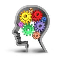Lespace-semiotherapie-le-cerveau