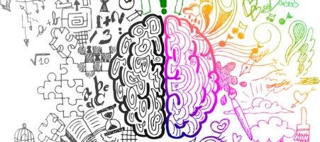 Psychologie_Verhalten_Gehirn