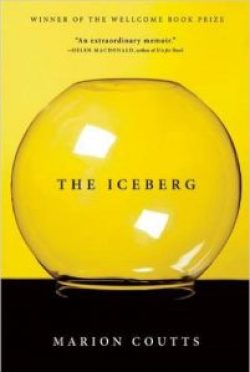 the-iceberg-psychonephrology