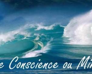 pleine-conscience-mindfulness