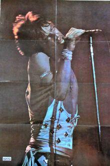 Popster mag - Jagger poster