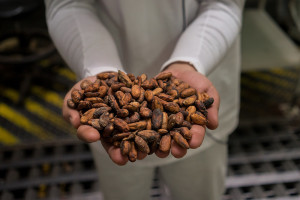 Fair trade can benefit some of the world's most impoverished farmers (© USAID_IMAGES)