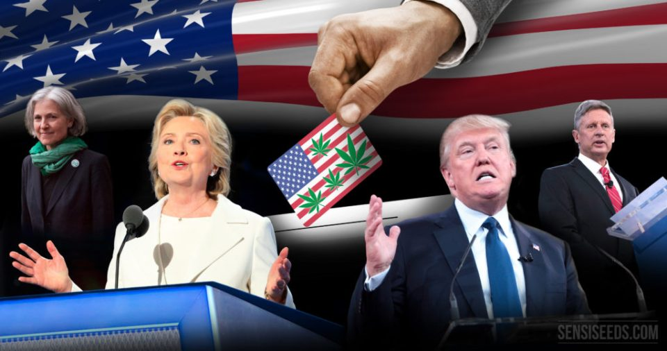 four-presidential-candidates-and-one-plant-cannabis
