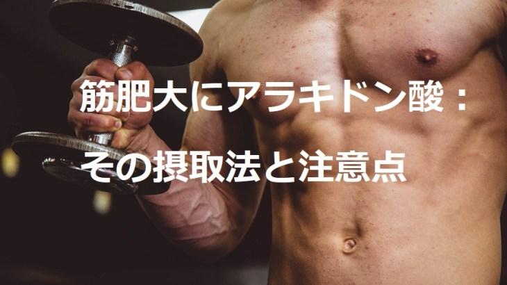 筋肥大にアラキドン酸:摂取のススメと注意点
