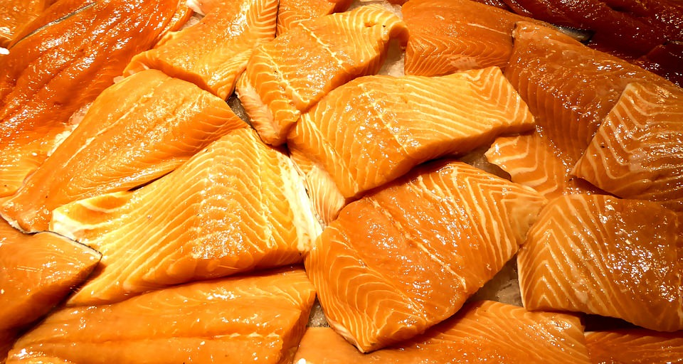 salmão de cativeiro tem substâncias químicas e causa câncer