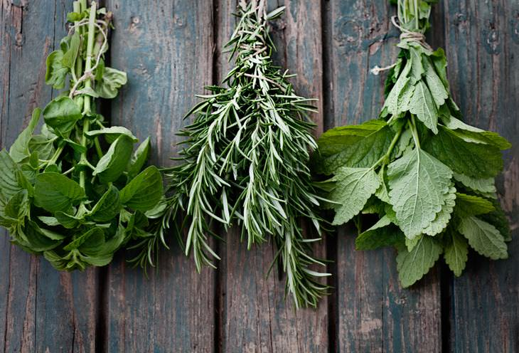 guia completo para cultivar ervas em casa