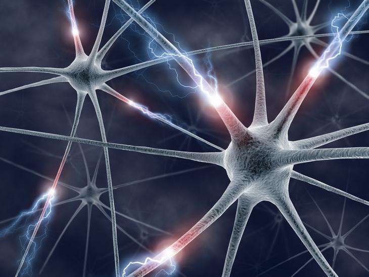 A ciência finalmente encontrou a fonte da consciência humana?