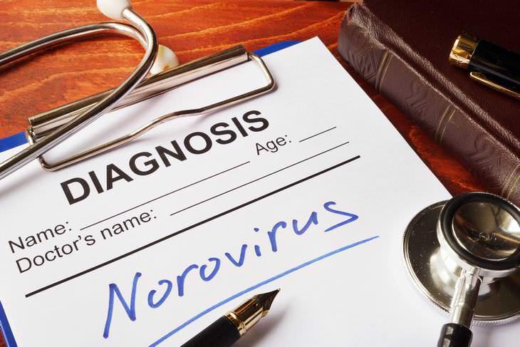 norovírus