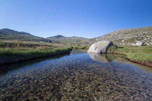 Wilkinson Creek