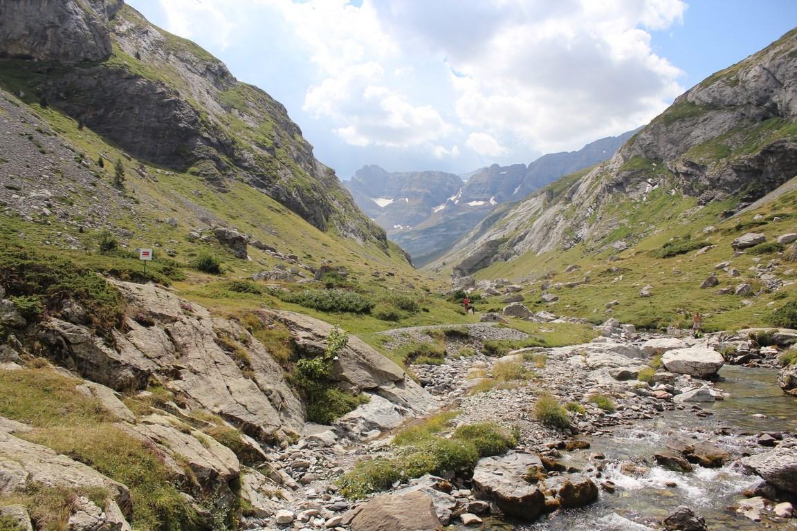 Przyroda Pirenejów