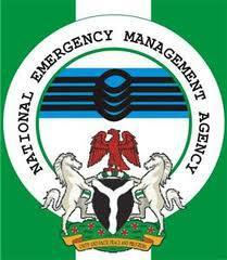 500 Displaced in Damboa By Insurgency – NEMA
