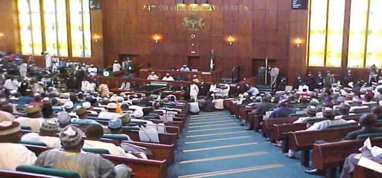 Nigerian govt sues Senate, House over Constitution Amendments