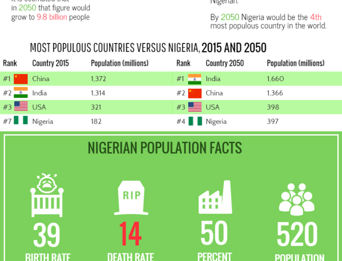 INFOGRAPHICS: Nigeria's Population Profile
