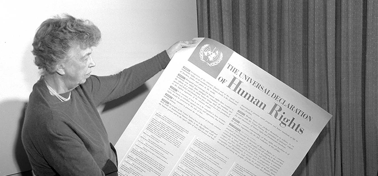 Humanity's Rights: Reflecting on the Universal Declaration of Human Right