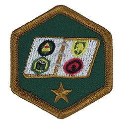 Order of the Embroiderer Junior Archivist Merrit Badge