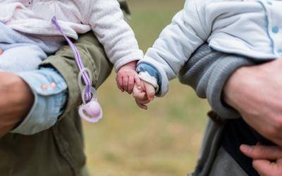 Gerichtsurteile und rechtliche Regelungen der Leihmutterschaft