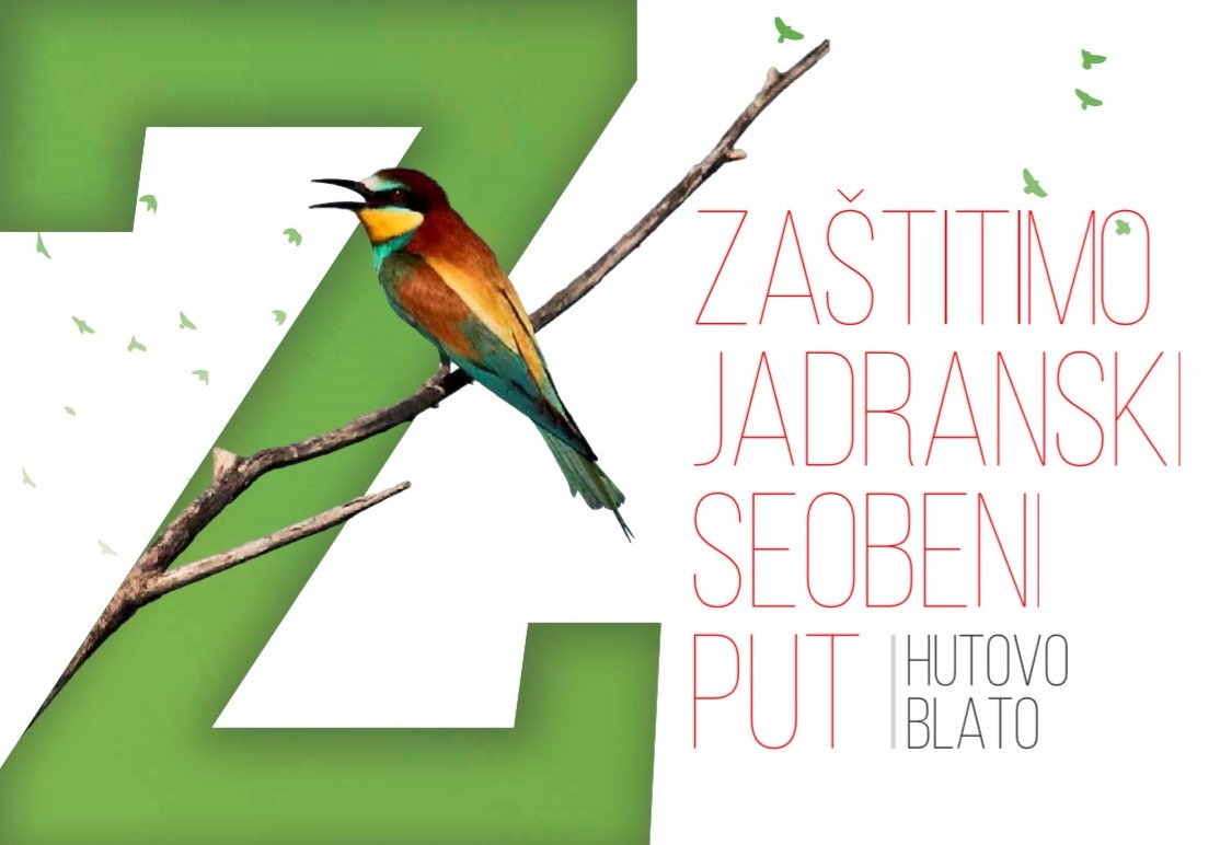 Protect the Adriatic Flyway – Hutovo blato
