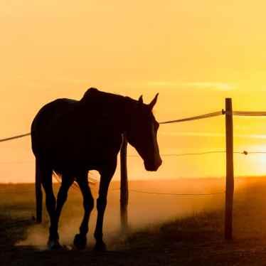 Ambiance western 1