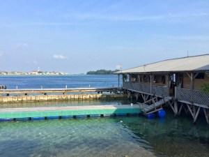 PT. Nusa Ayu Karamba di kepulauan Seribu