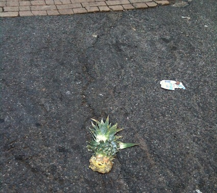 pineapple-roadkill