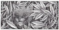 Cheshire Cat (1)122