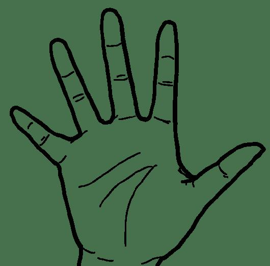 【白黒線画】右手(手掌面)- 透過PNG画像ファイル:リハイラスト(リハビリ専門家のためのイラスト無料素材集)by PT・OT・STニュース.blog