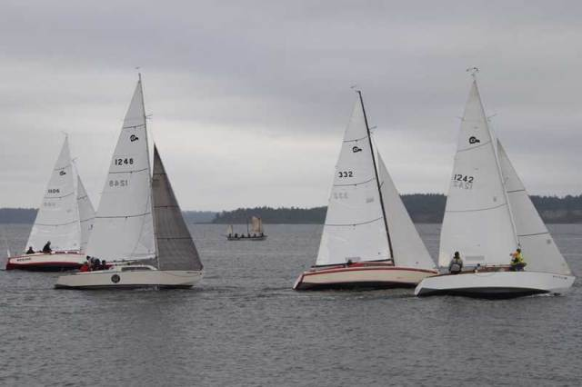 BEAR or TOWNSEND looking like they are trying to enter the Thunderbird start on Race 2 of the PTSA Cats Paw series. Photo Wendy Feltham