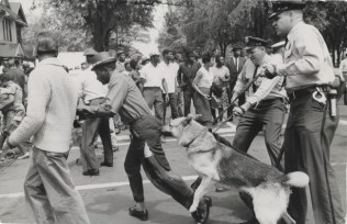 """Untitled [Police dogs are turned onto protesters by order of Eugene """"Bull""""  Connor, Commissioner of Public Safety, during a Civil Rights demonstration,  Birmingham, Alabama] (L.2020.7.3)"""
