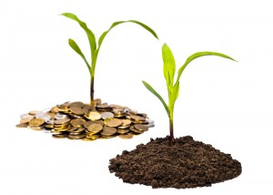 farm seed soil grow wealth