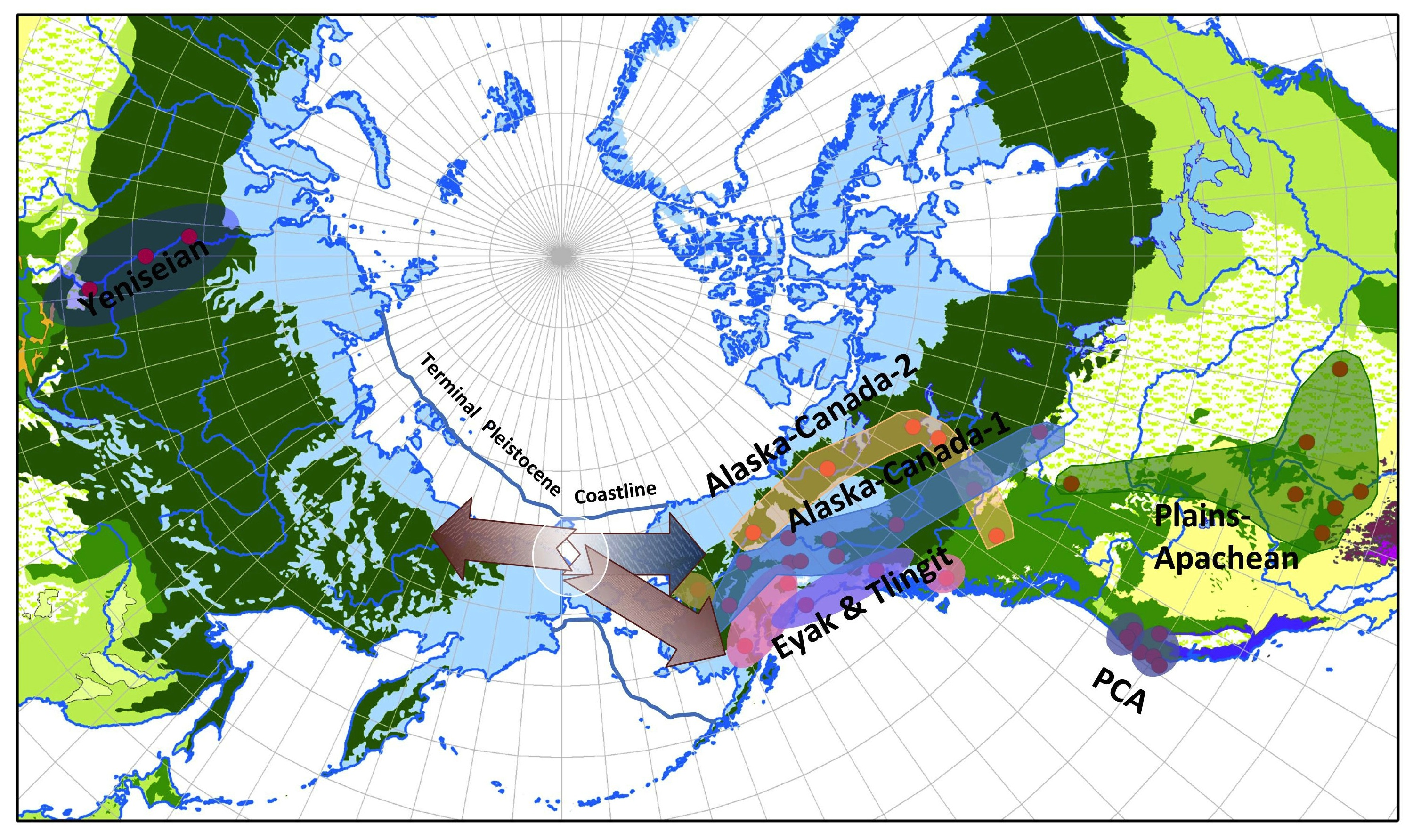 Ancient Migration Patterns To North America Are Hidden In