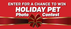 Pet Holiday Photo Contest