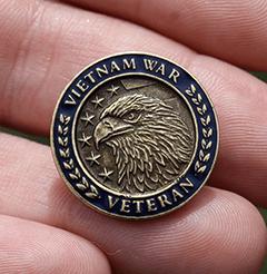 Vietnam Veteran Hat Pin 1 1/4   eBay