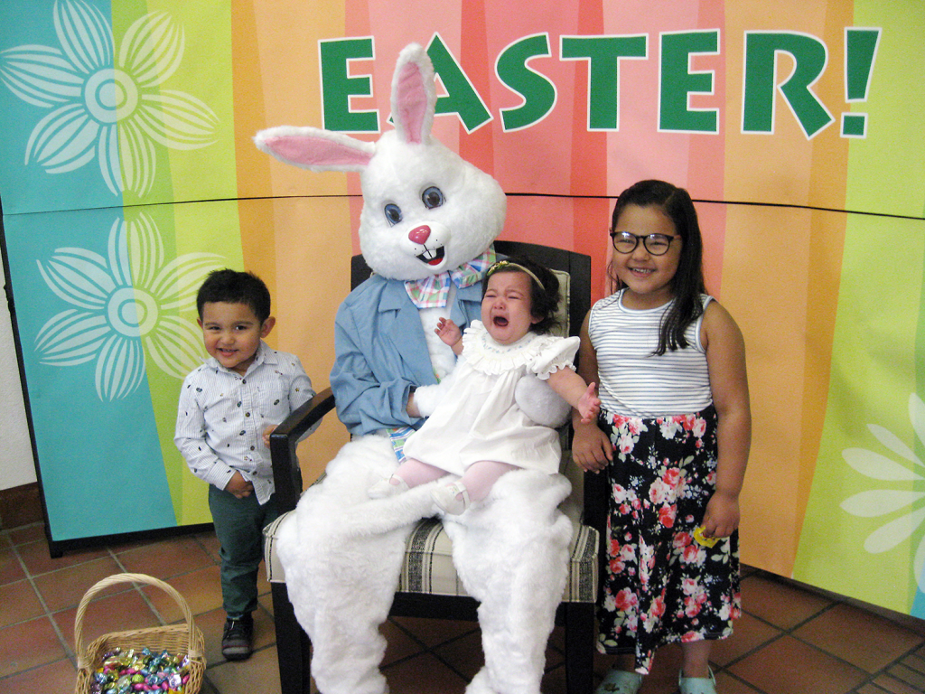 VILSECK, Germany - A tyke isn't so amused sitting on the lap of Easter bunny Kaitlin Amidon during a photo event April 13. Amidon is usually an associate at the Vilseck store.