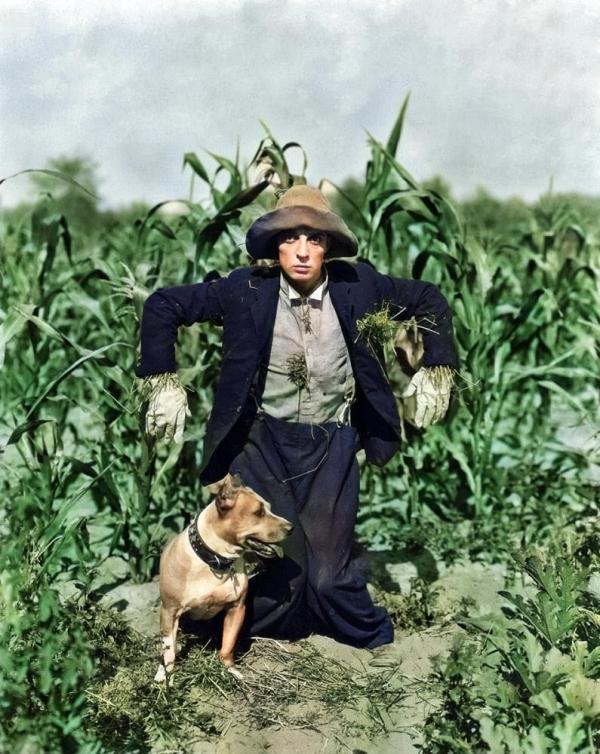 The Scarecrow, 1920 starring Buster Keaton