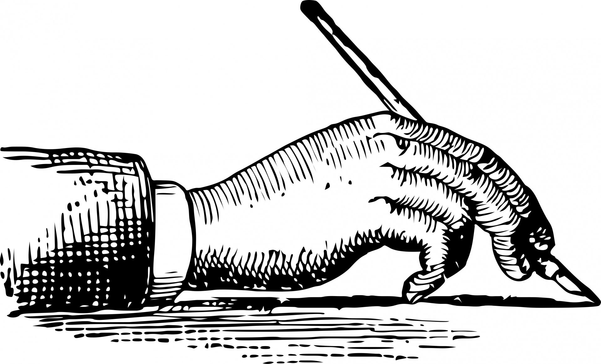 Writing Hand Free Stock Photo