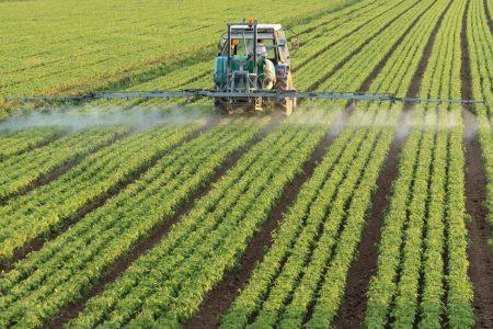 California bans poisonous agricultural pesticide