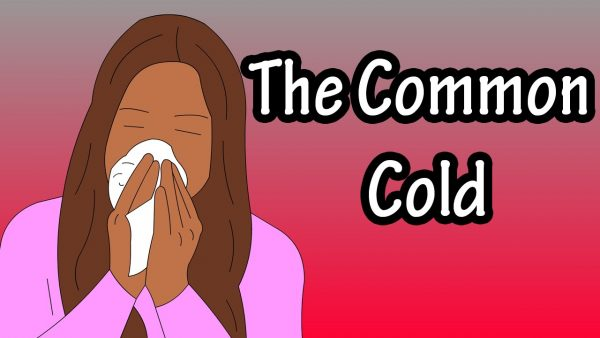 Common cold e1599070232217