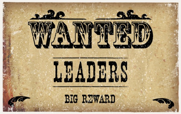 Wanted: Public Leaders to strengthen our board