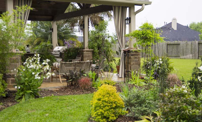 terrace  plants_